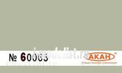 60065 Акан Небесный (Sky type