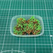 35020/1 DasModel Bushes summer 5 pcs. Option 1 (green)