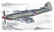 SH48041 Special Hobby 1/48 Самолет Fairey Firefly Mk.IV/V