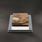 Б08 аRтБаZа 1/35 Фрагмет песчаного бруствера окопа с мешком