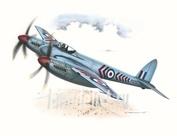 SH72046 Special Hobby 1/72 Самолет De Havilland Hornet Mk.1