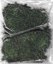 30101 DasModel Moss stabilized, dark green