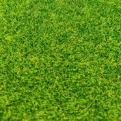 3030 DasModel 1/35 Grass cover (A4 Sheet) (summer)