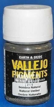 73109 Vallejo Pigment hood. Raw umber/NATURAL UMBER