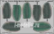 73442 Eduard 1/72 Фототравление для Leaves Palm Howea Belmoreana colour