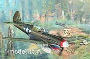 02212 Я-моделист клей жидкий плюс подарок Trumpeter 1/32 P-40N War Hawk