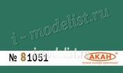 81051 Акан Rlm: 25 (стандартный) Светло-зелёный (Hellgrün)